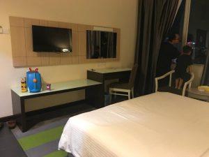 mega view hotel